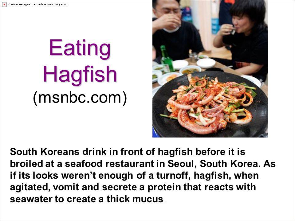 Eating Hagfish (msnbc.com)