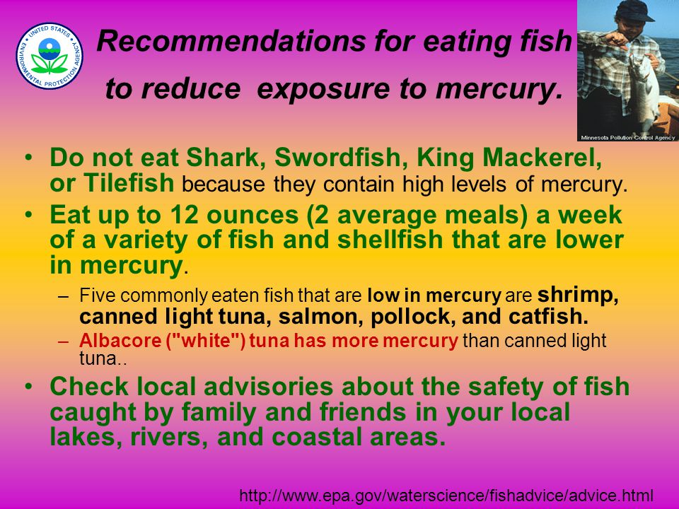 Recommendations for eating fish to reduce exposure to mercury.