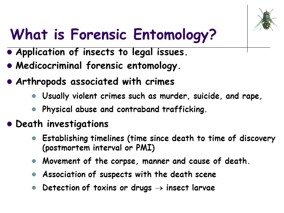 An Introduction to Forensic Entomology ppt download – Forensic Entomology Worksheet