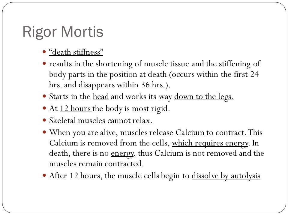 Rigor Mortis death stiffness