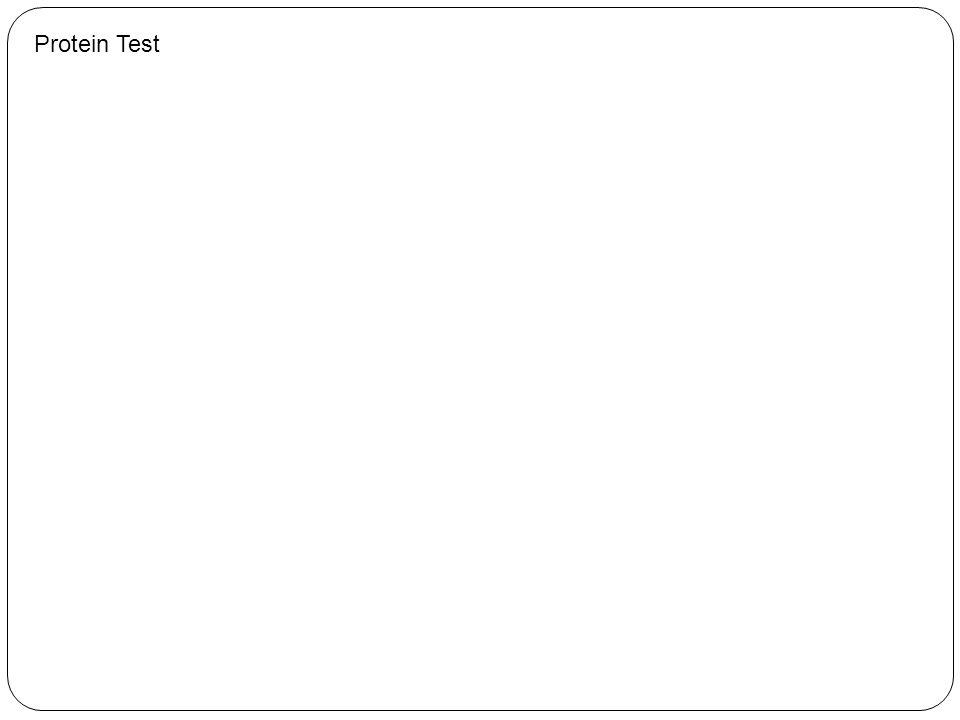 Protein Test