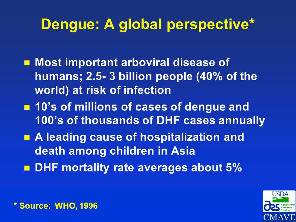 Dengue: A global perspective*