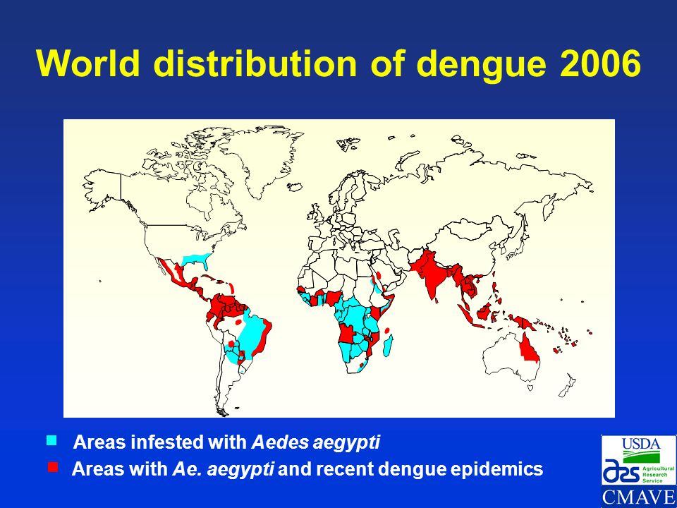 World distribution of dengue 2006