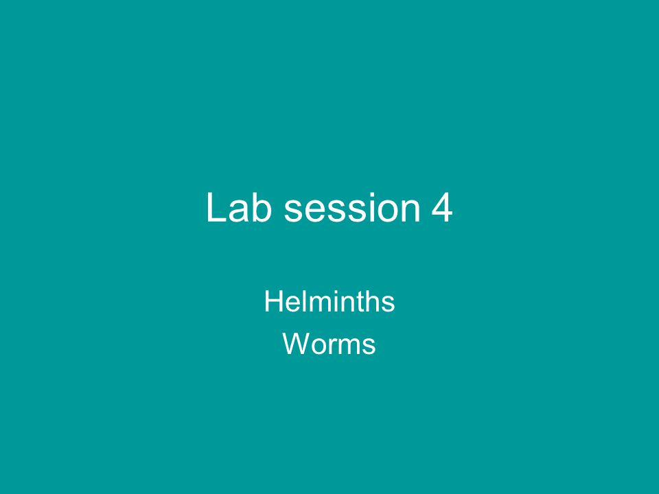 Lab session 4 Helminths Worms