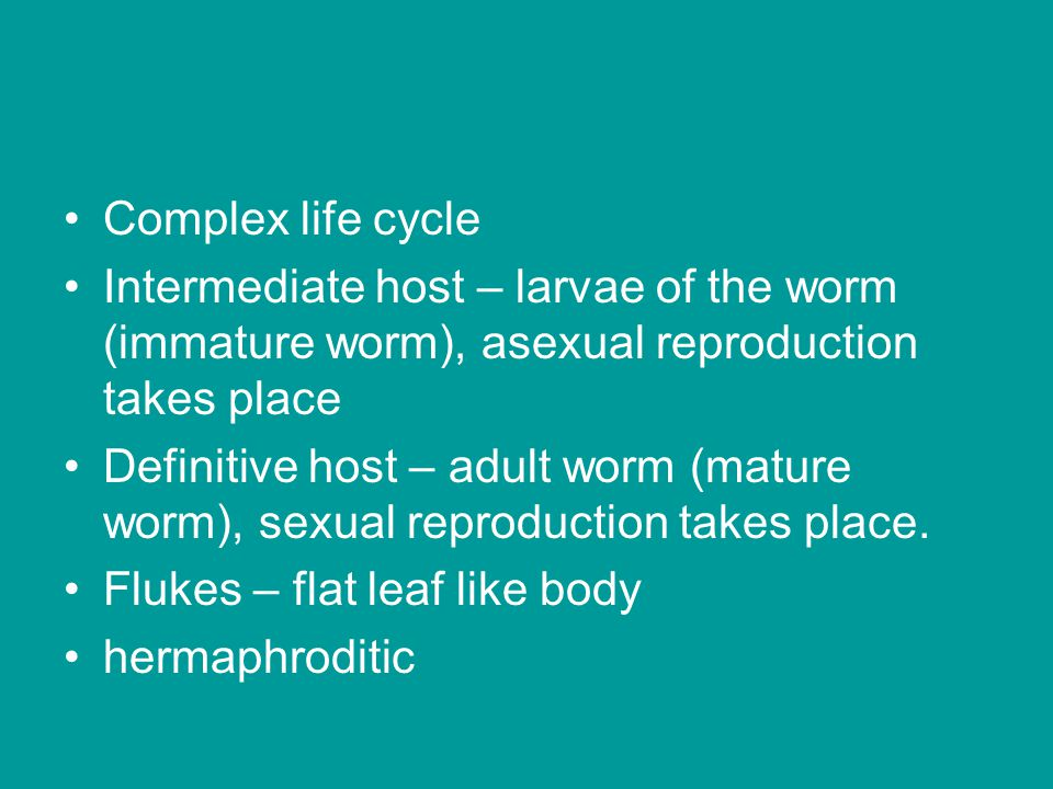 Complex life cycle Intermediate host – larvae of the worm (immature worm), asexual reproduction takes place.