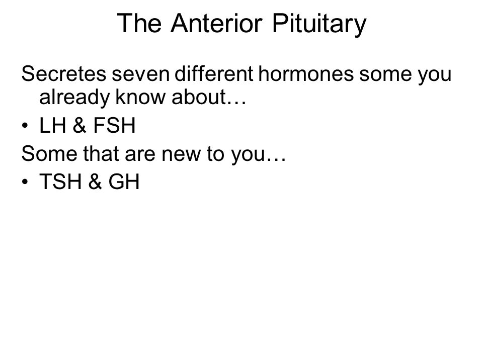 The Anterior Pituitary