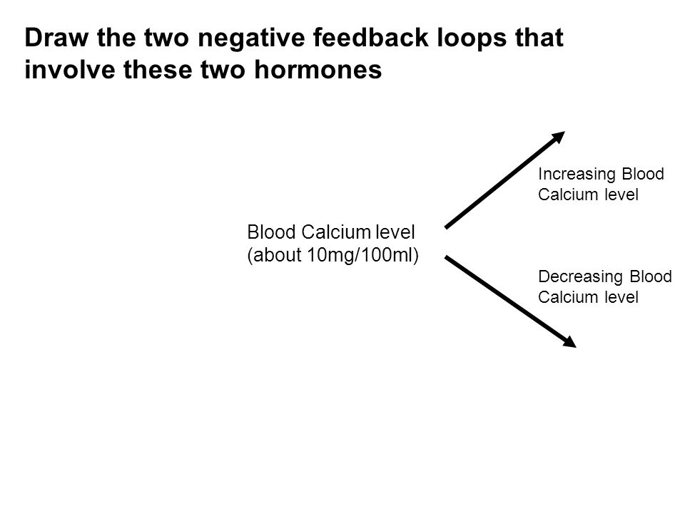 Draw the two negative feedback loops that involve these two hormones