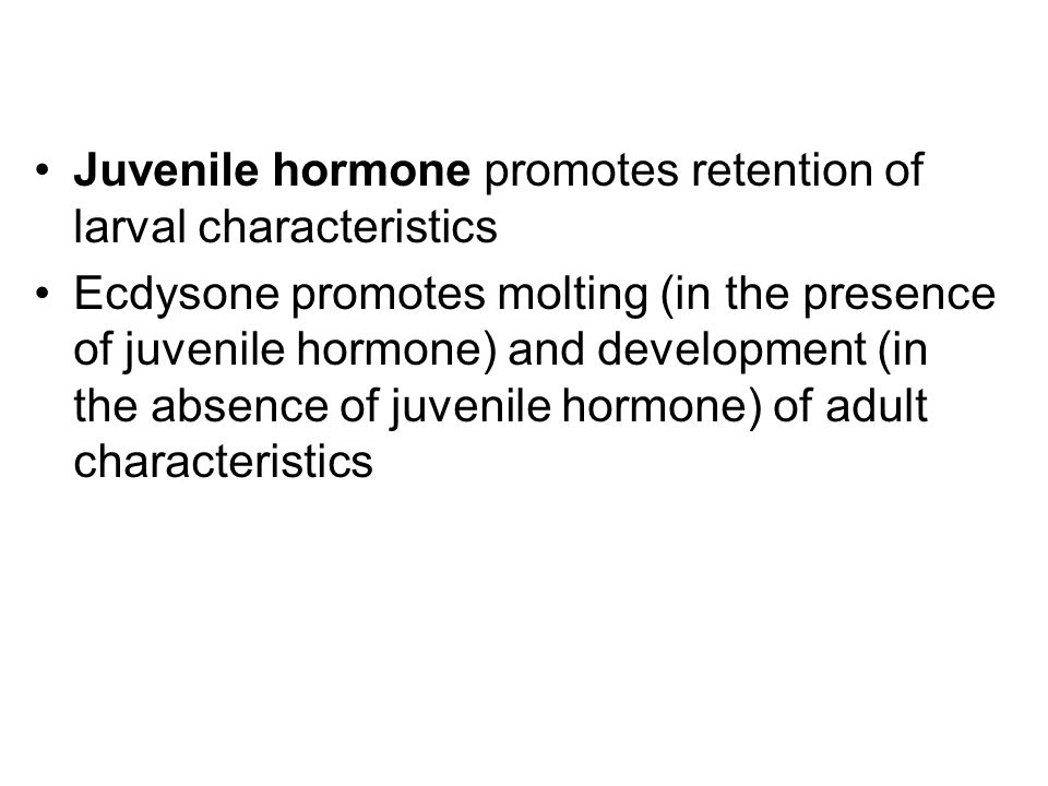Juvenile hormone promotes retention of larval characteristics