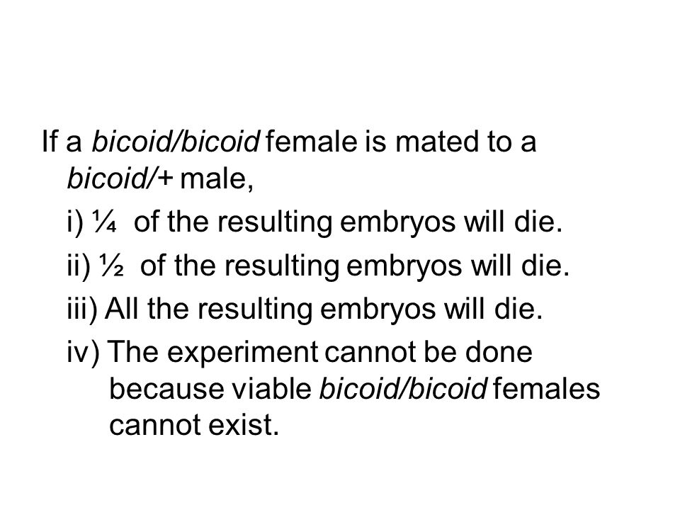 If a bicoid/bicoid female is mated to a bicoid/+ male,