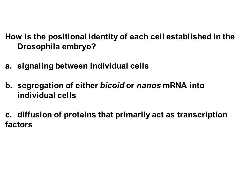 signaling between individual cells