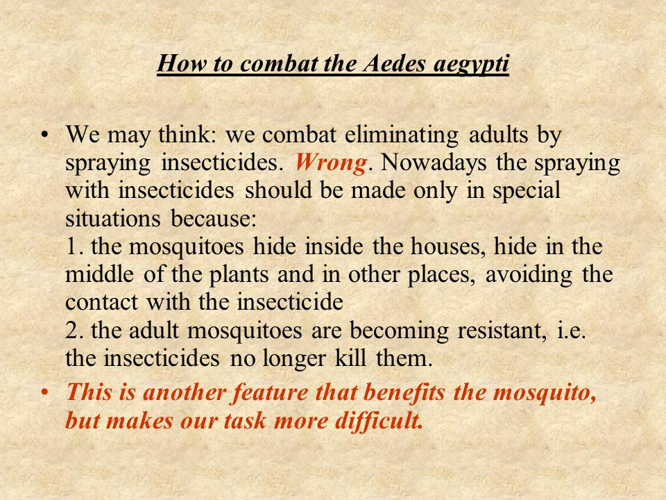 How to combat the Aedes aegypti