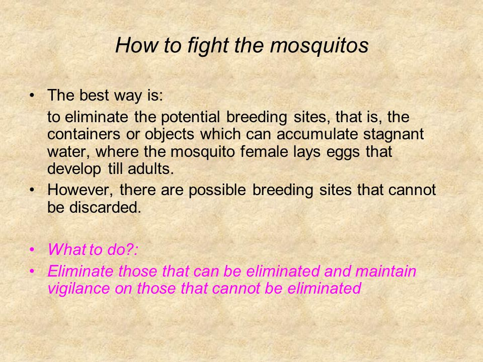 How to fight the mosquitos