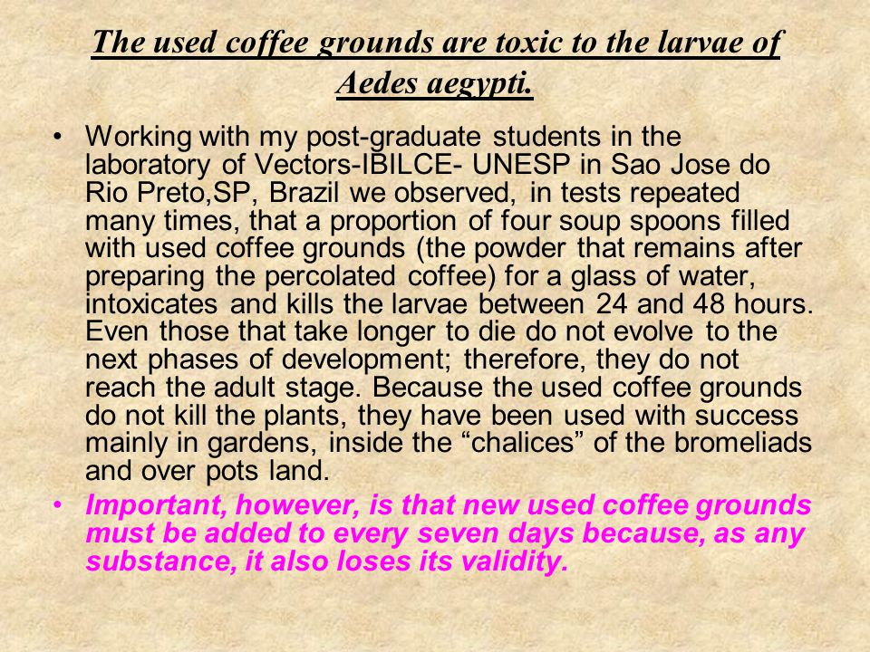 The used coffee grounds are toxic to the larvae of Aedes aegypti.