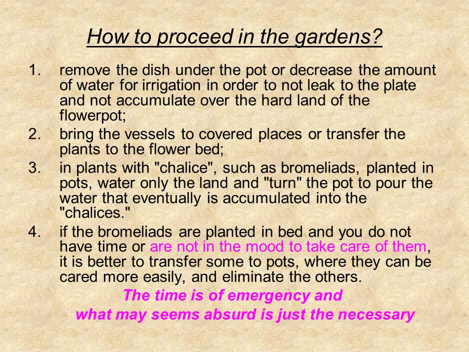 How to proceed in the gardens