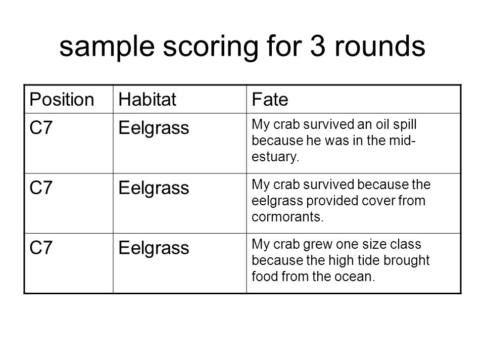 sample scoring for 3 rounds