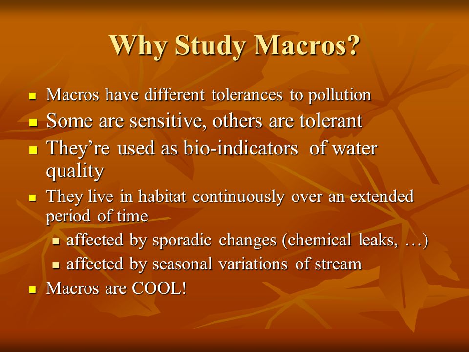 Why Study Macros Some are sensitive, others are tolerant