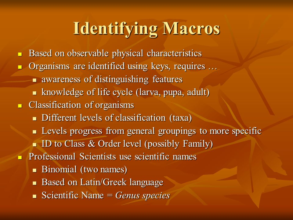 Identifying Macros Based on observable physical characteristics
