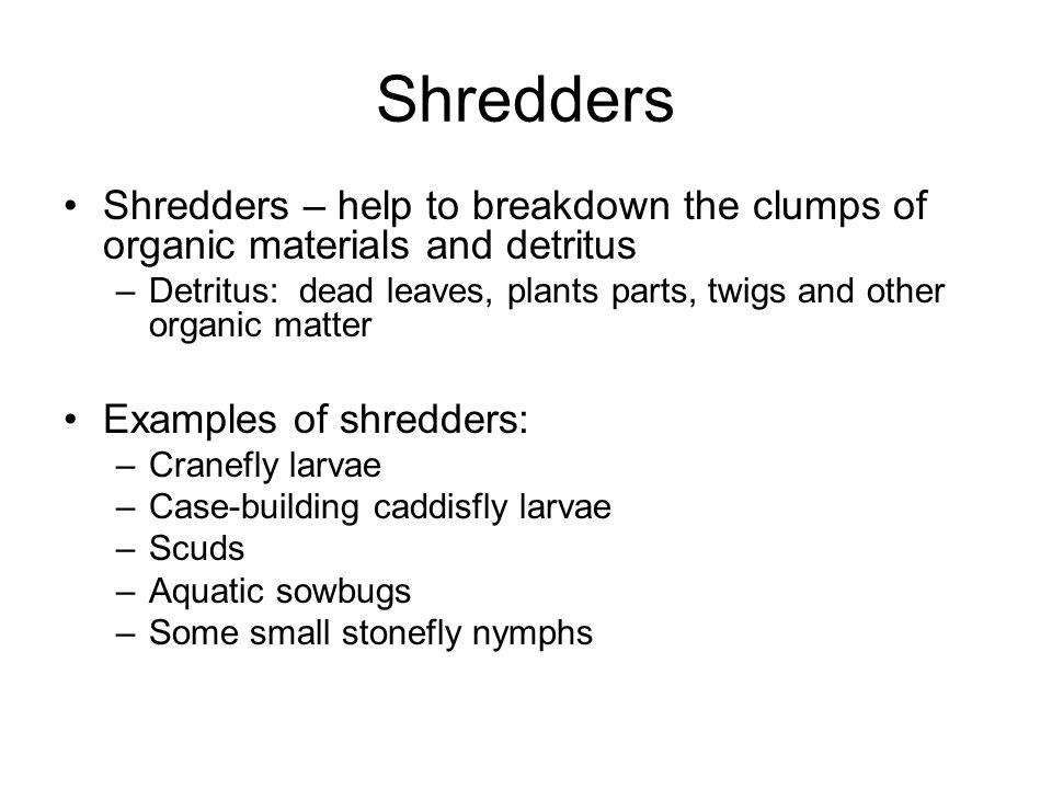 Shredders Shredders – help to breakdown the clumps of organic materials and detritus.