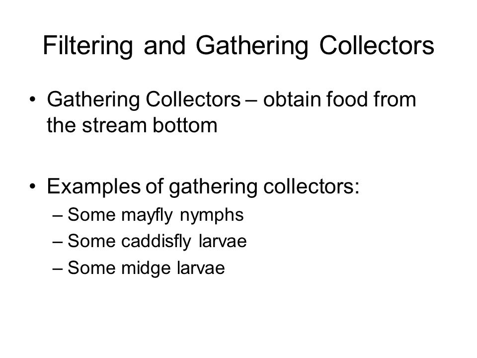 Filtering and Gathering Collectors