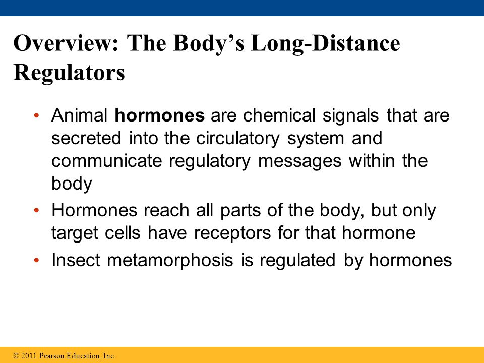 Overview: The Body's Long-Distance Regulators