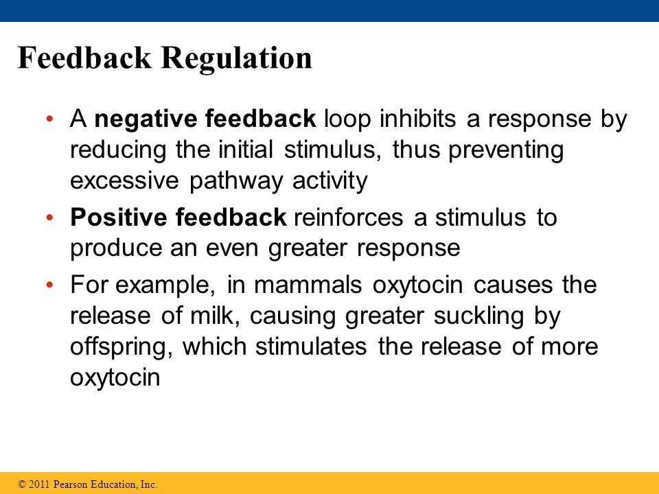 Feedback Regulation A negative feedback loop inhibits a response by reducing the initial stimulus, thus preventing excessive pathway activity.