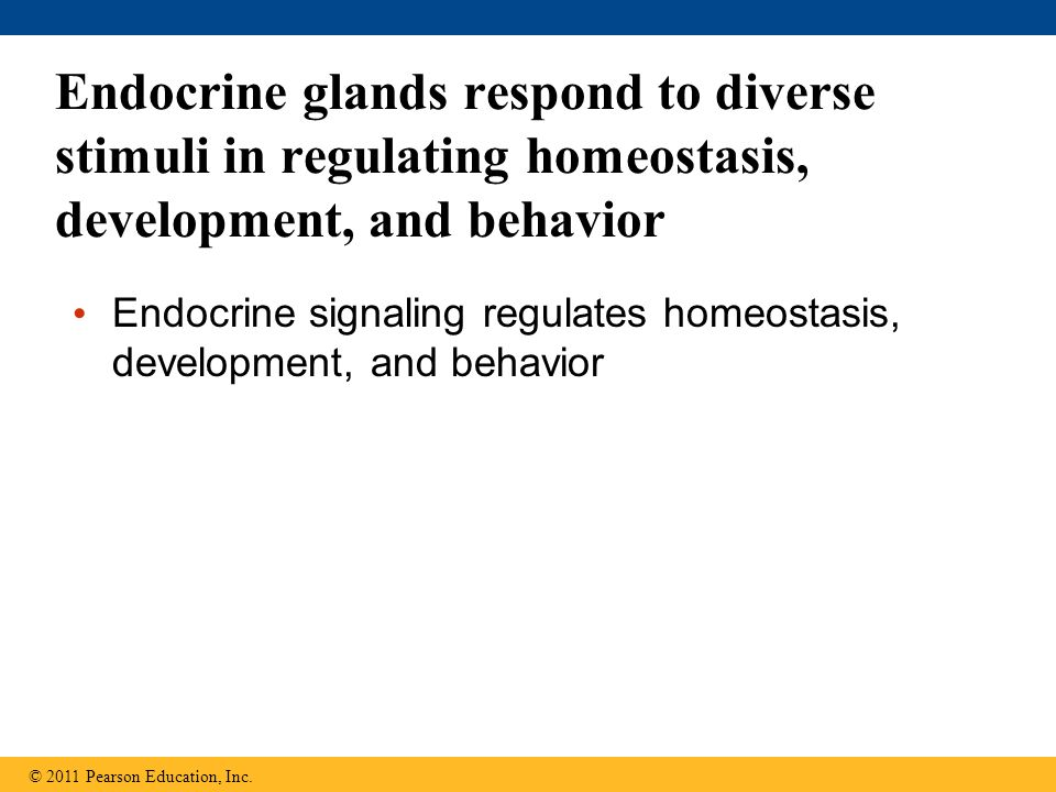 Endocrine glands respond to diverse stimuli in regulating homeostasis, development, and behavior