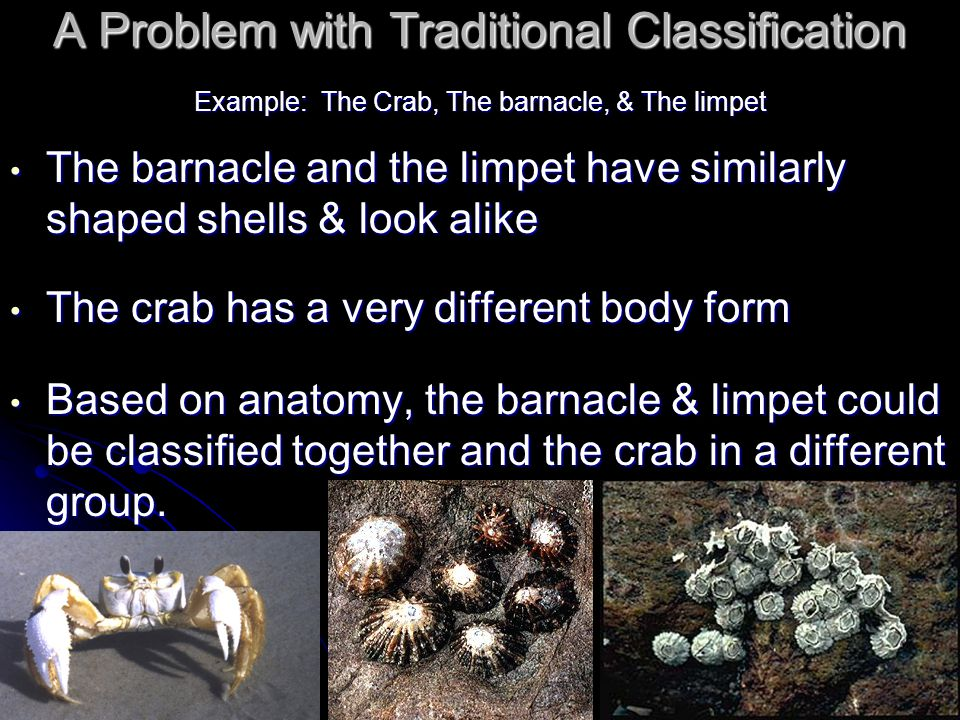 A Problem with Traditional Classification