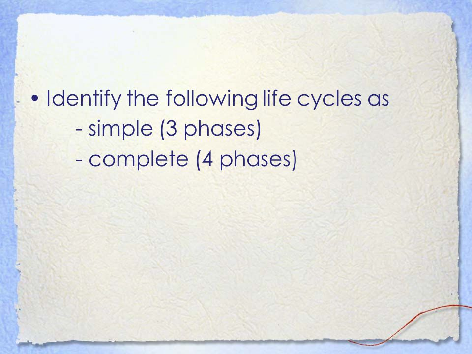 Identify the following life cycles as