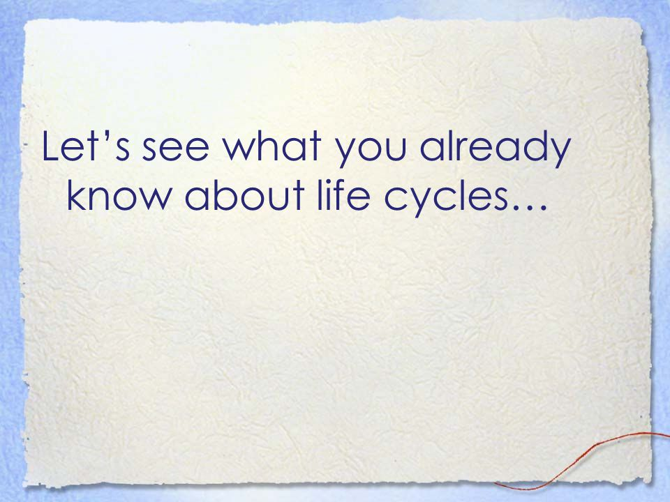 Let's see what you already know about life cycles…