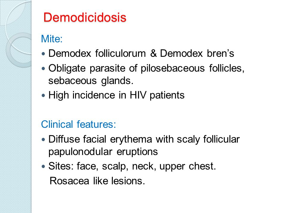 Demodicidosis Mite: Demodex folliculorum & Demodex bren's