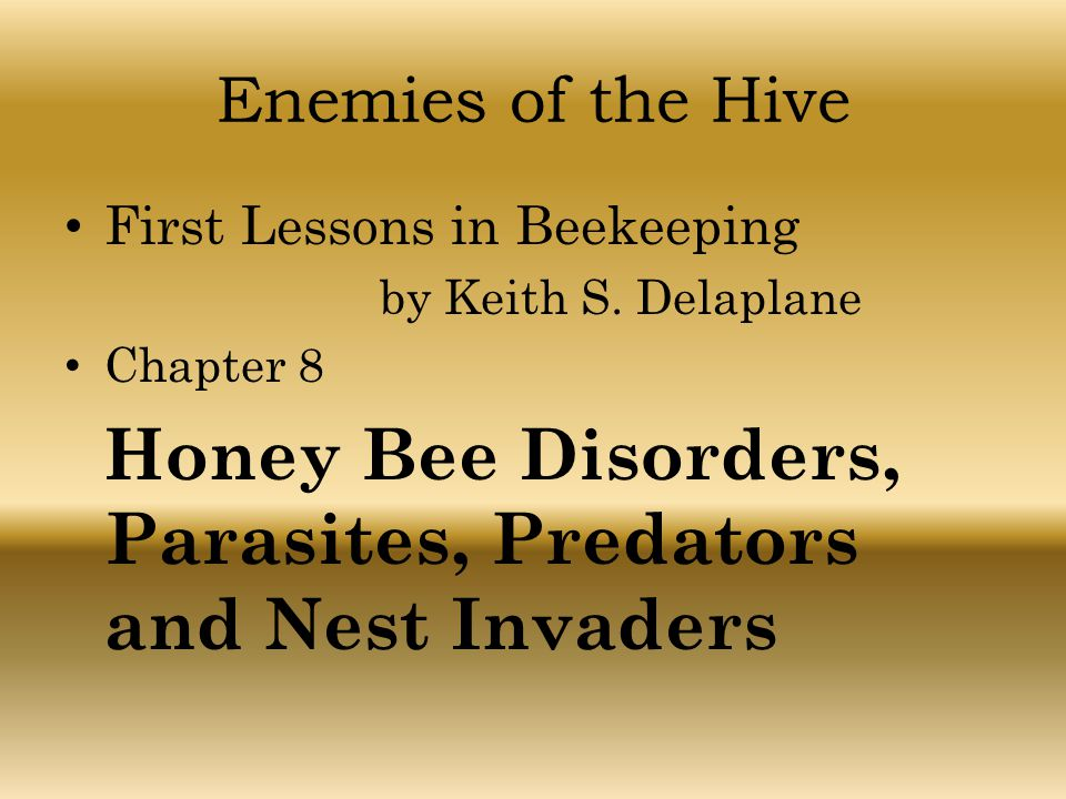 Enemies of the Hive First Lessons in Beekeeping by Keith S. Delaplane