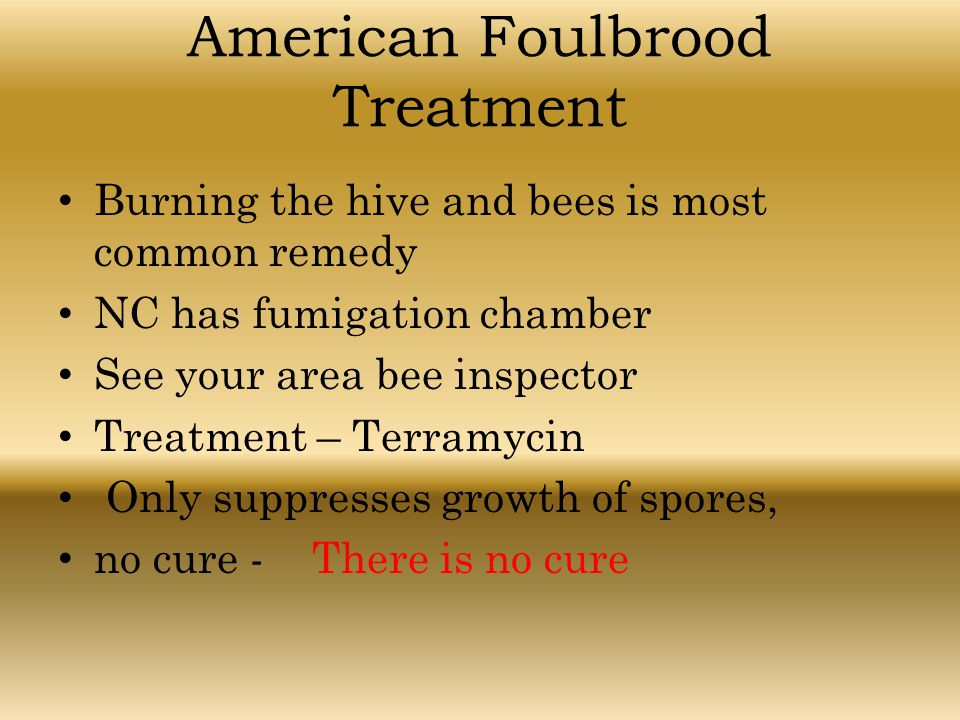 American Foulbrood Treatment
