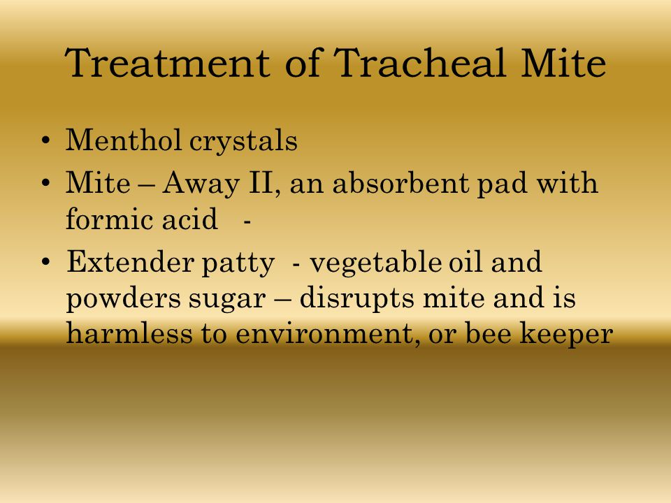 Treatment of Tracheal Mite