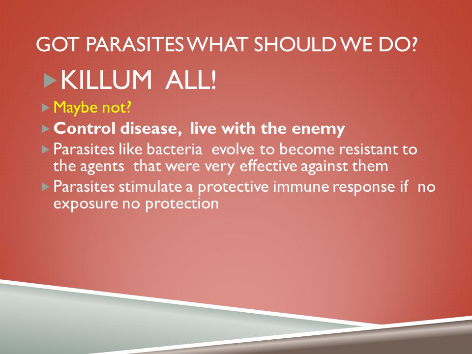 Got parasites what should we do