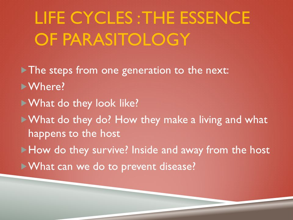 Life cycles : the essence of parasitology