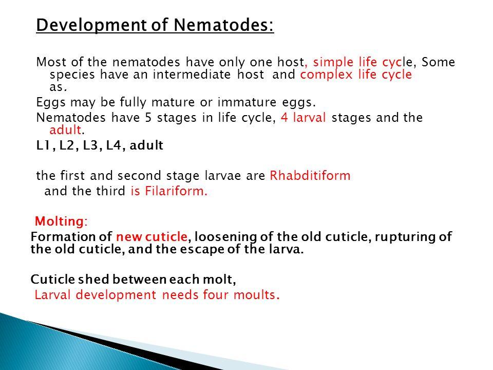 Development of Nematodes: