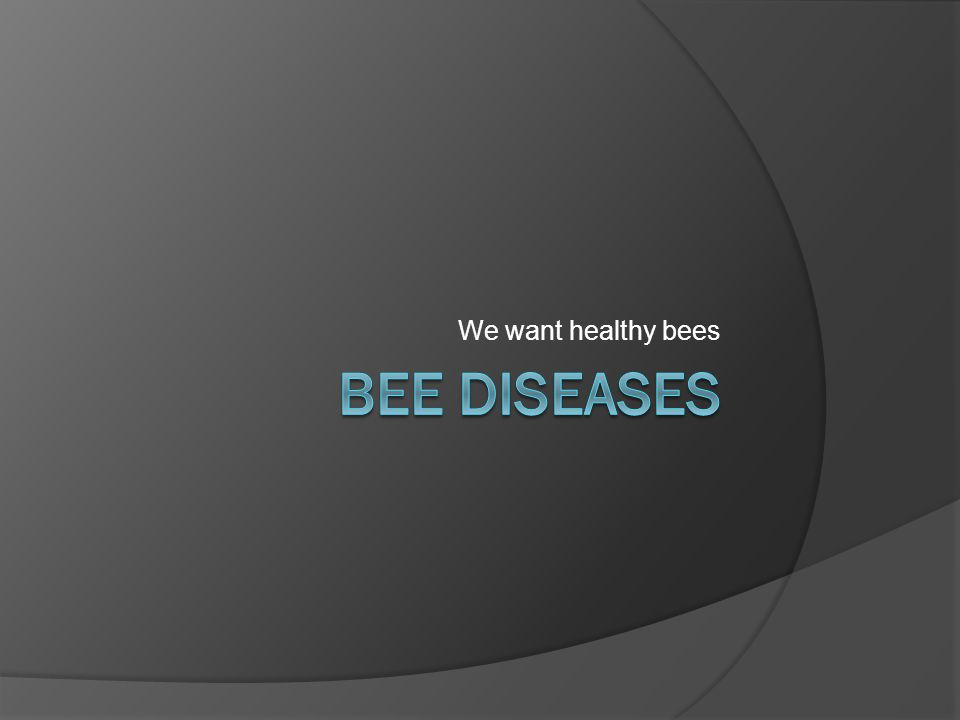 We want healthy bees Bee Diseases