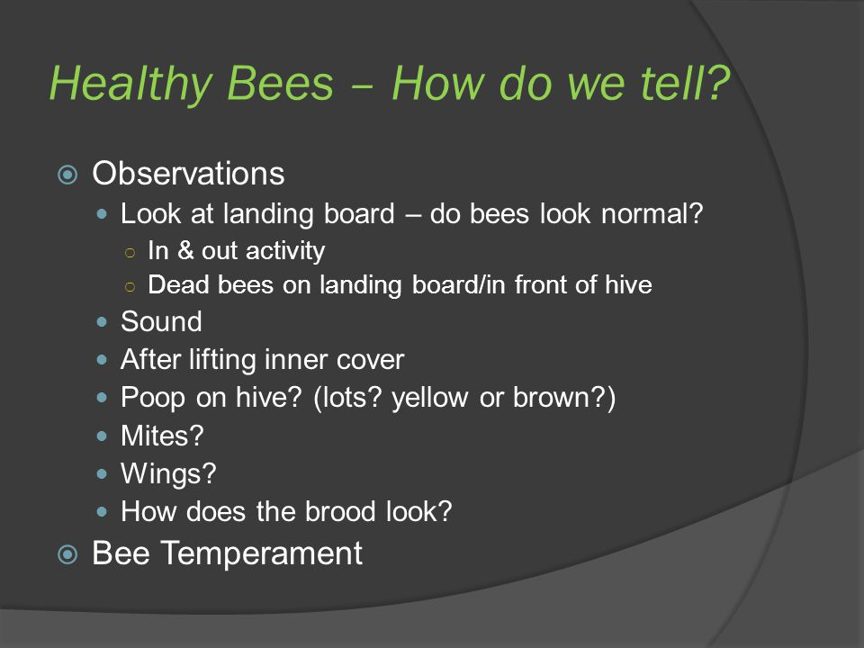 Healthy Bees – How do we tell