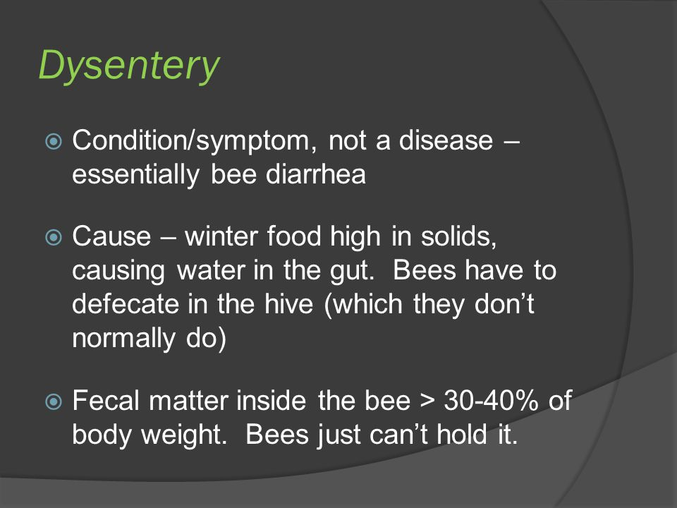Dysentery Condition/symptom, not a disease – essentially bee diarrhea