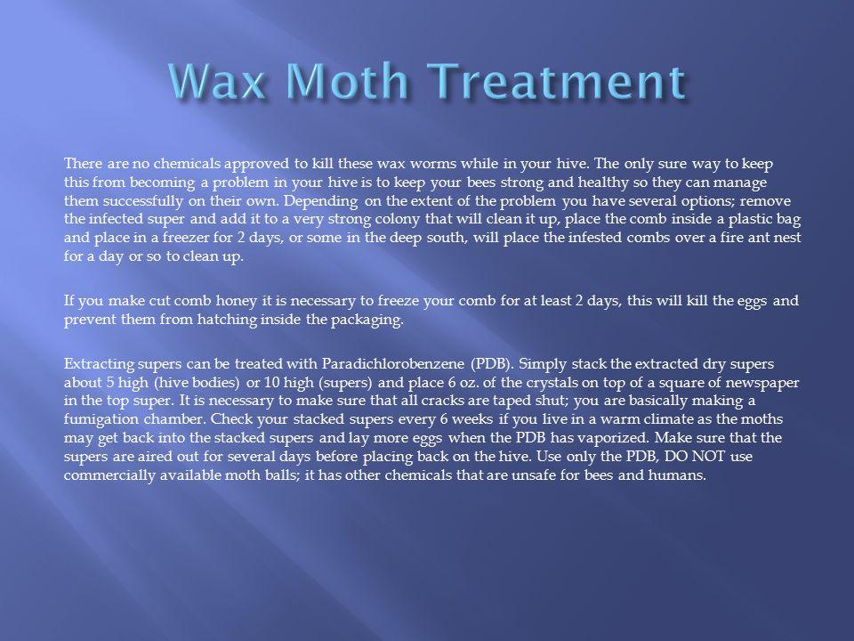 Wax Moth Treatment