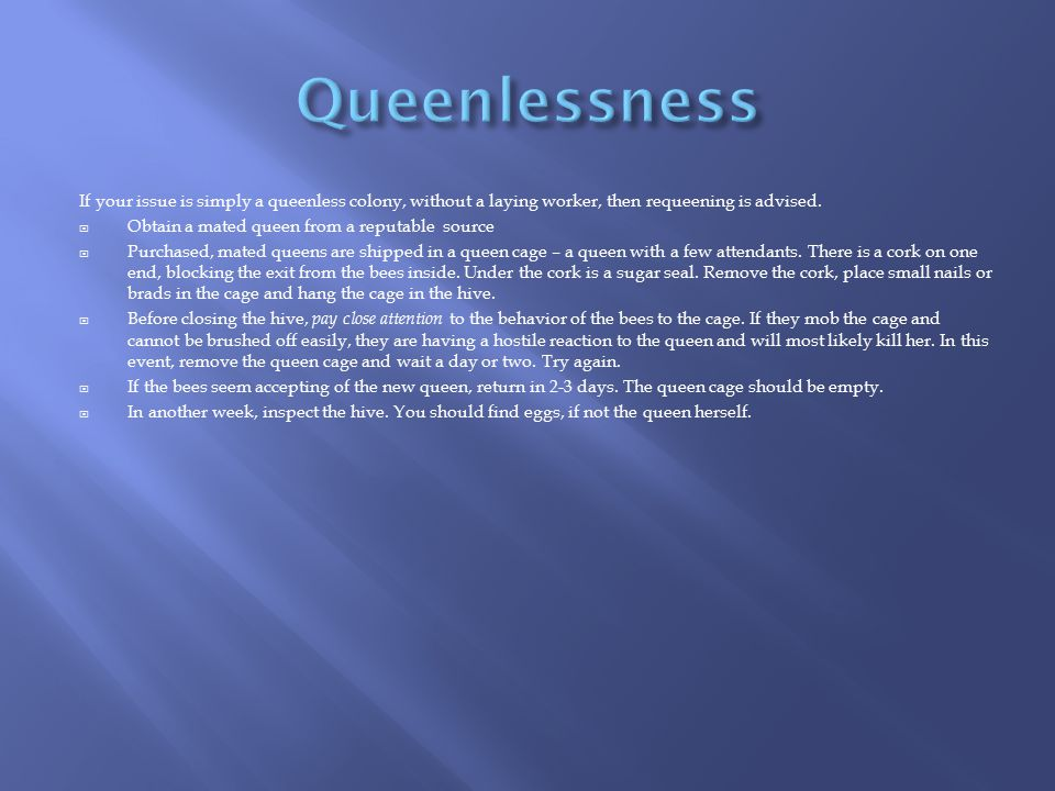 Queenlessness If your issue is simply a queenless colony, without a laying worker, then requeening is advised.