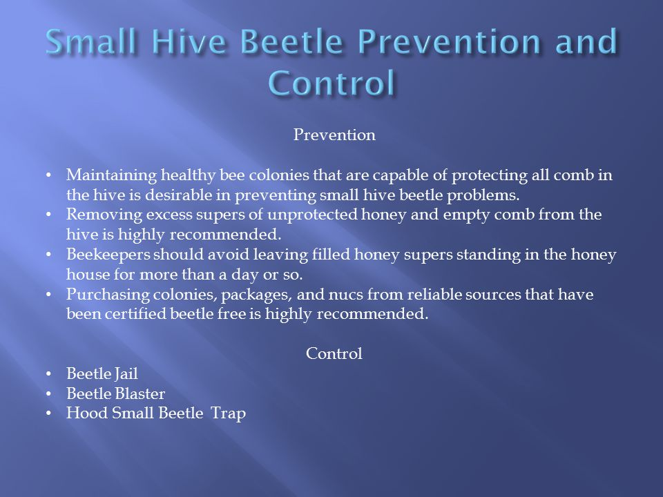 Small Hive Beetle Prevention and Control