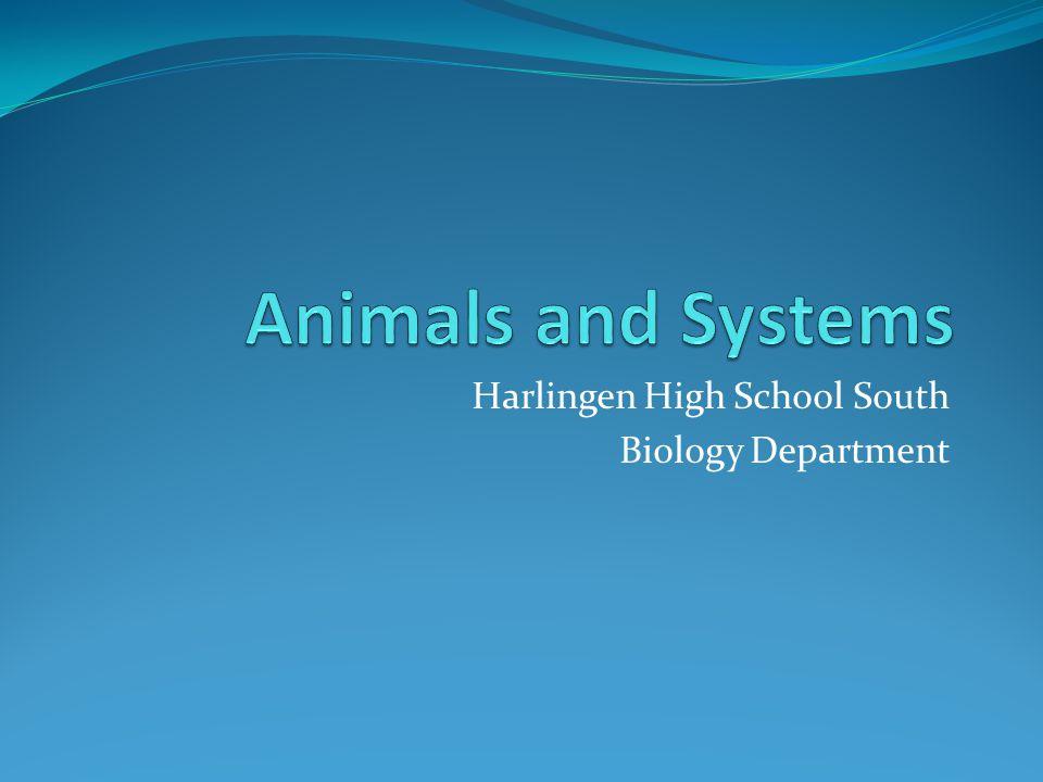 Harlingen High School South Biology Department