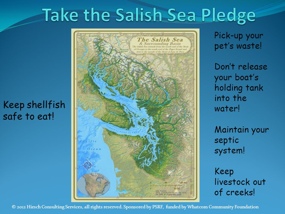 Take the Salish Sea Pledge