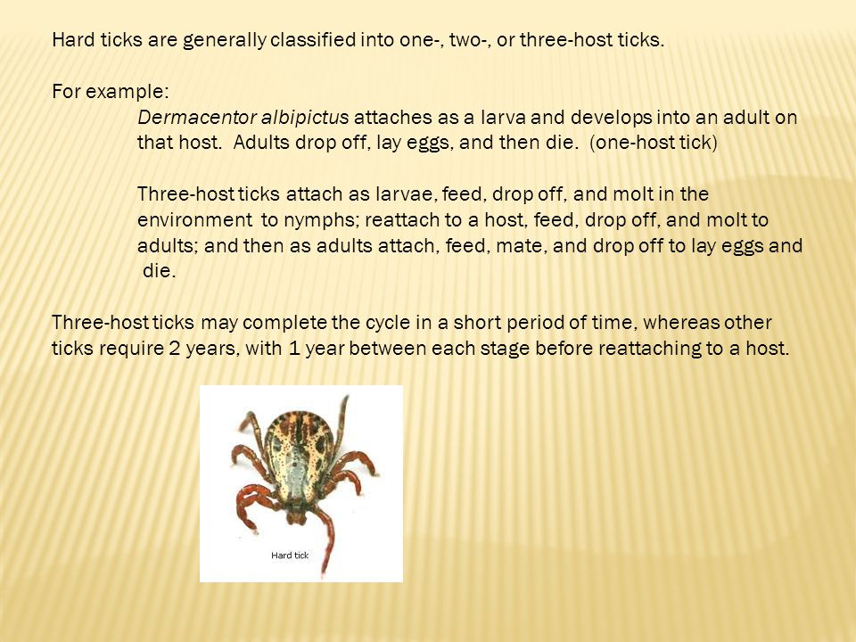 Hard ticks are generally classified into one-, two-, or three-host ticks.