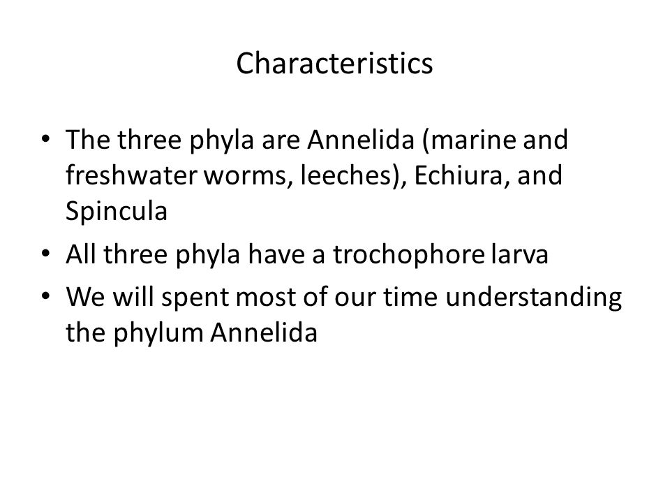 Characteristics The three phyla are Annelida (marine and freshwater worms, leeches), Echiura, and Spincula.