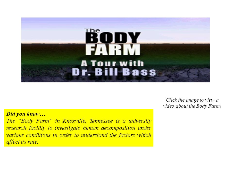 Click the image to view a video about the Body Farm!