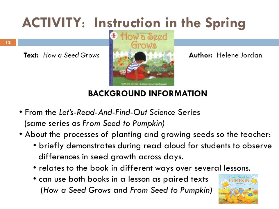 ACTIVITY: Instruction in the Spring