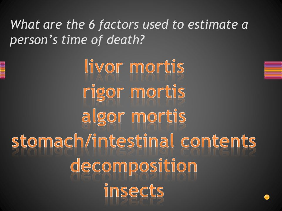 What are the 6 factors used to estimate a person's time of death