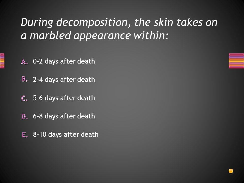 During decomposition, the skin takes on a marbled appearance within: